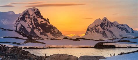 South Pole, Cruises and Animals in Antarctica