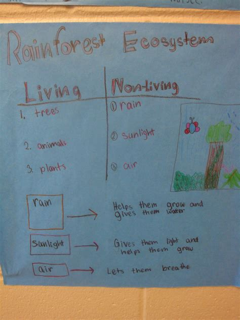 Living and Nonliving Parts of Ecosystems | kellynguyen